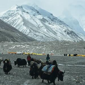 Het Base Camp op de Mount Everest
